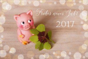 2017-gluecksschwein